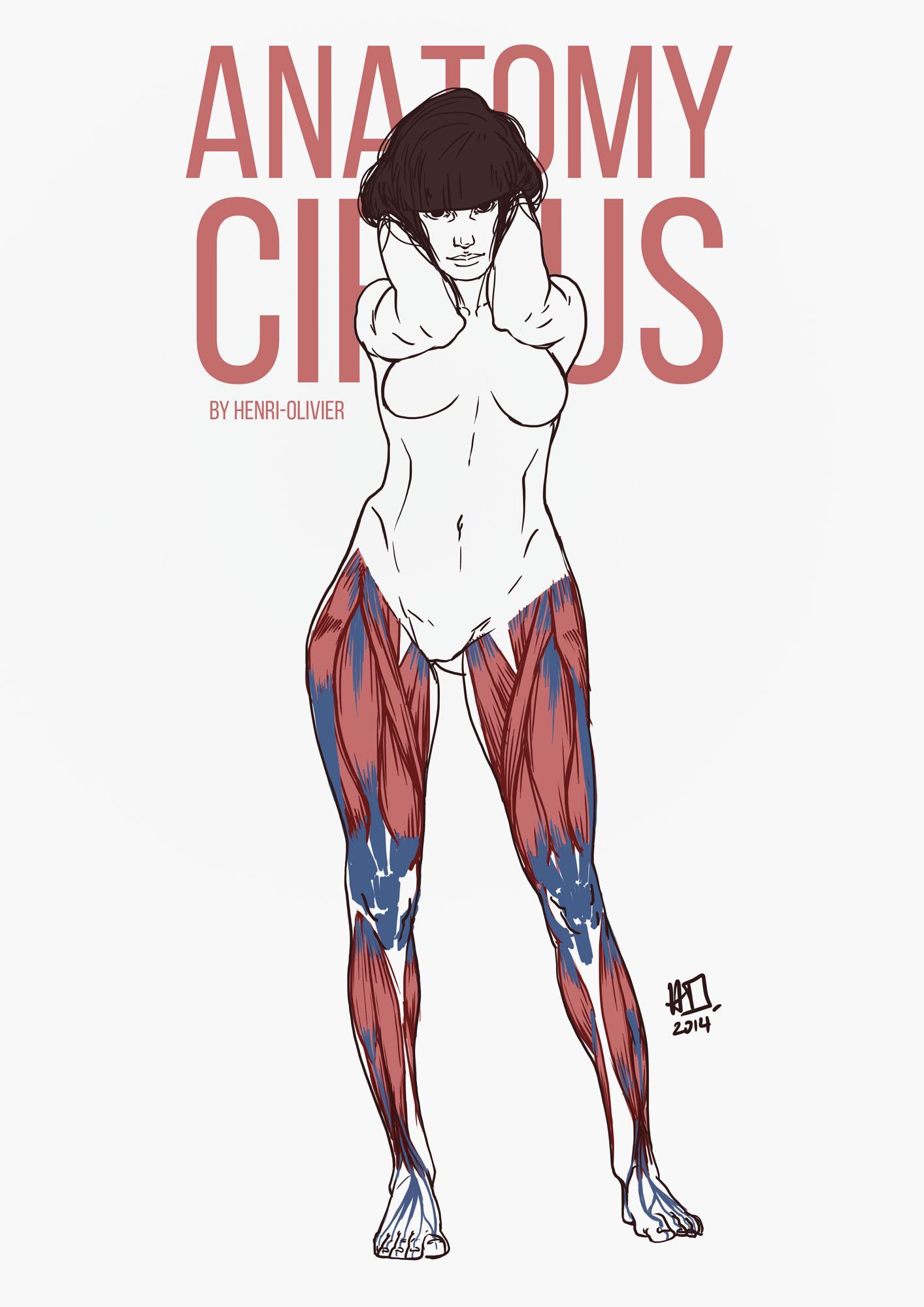 AnatomyCircus_Henri-Olivier_11