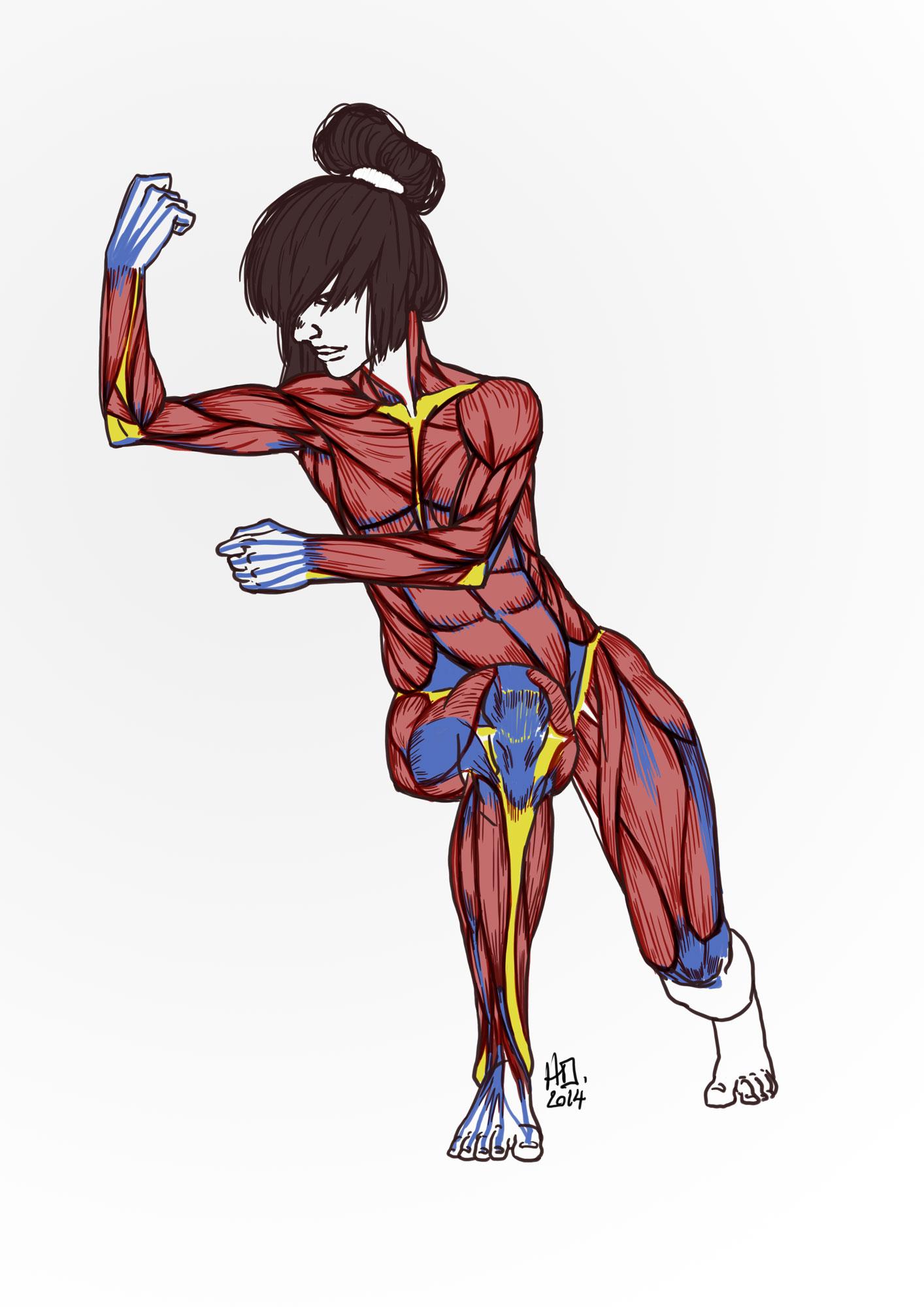 AnatomyCircus_Henri-Olivier_13