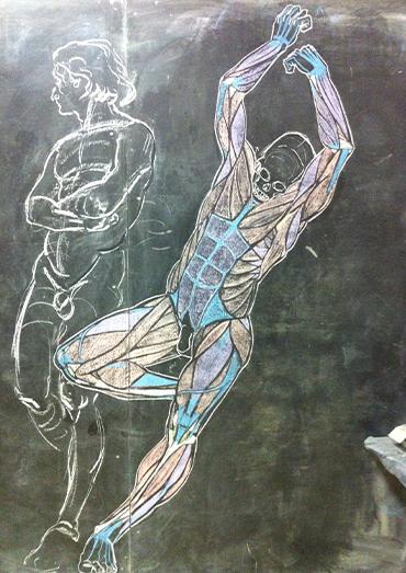 Henri-Olivier_Illustration_11_AnatomyCircus